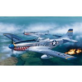 Italeri 1/72 P-51D Mustang