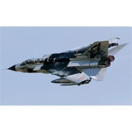 Italeri 1/48 Tornado IDS Black Panthers