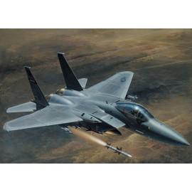 Italeri 1/48 F-15 C Eagle